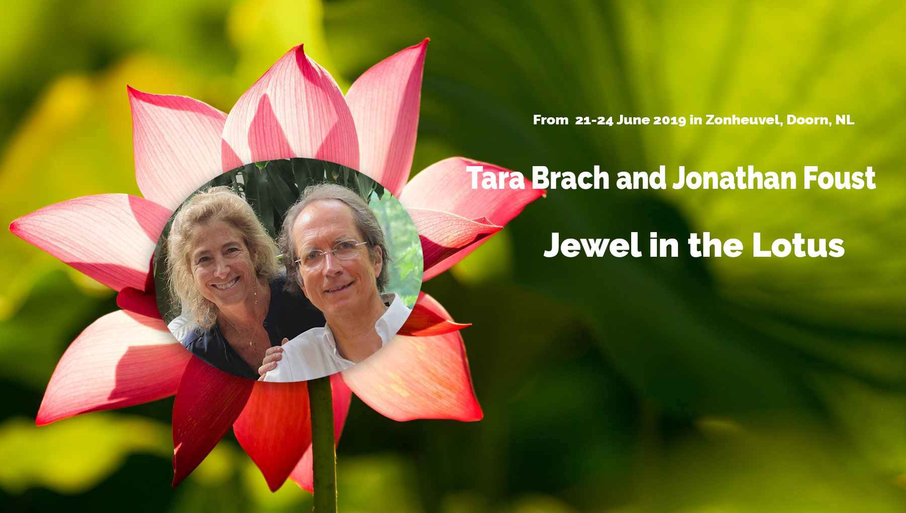 Jewel in the Lotus home page header
